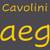 Cavolini FlipFont