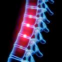 OrthoRef icon