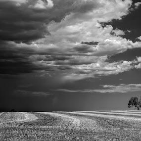by Dwayne Flight - Black & White Landscapes ( , storm, stormy, weather, #GARYFONGDRAMATICLIGHT, #WTFBOBDAVIS )