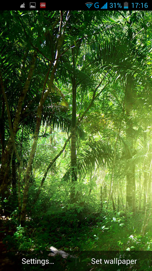 Jungle Live Wallpaper Android Apps On Google Play
