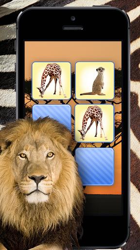 재밌는 동물 야생동물 퍼즐