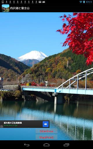 神奈川県:丹沢湖と富士山 JP063