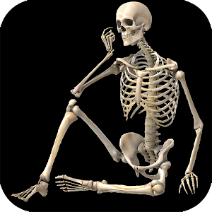 Skeletal System (Anatomy) - Android Apps on Google Play