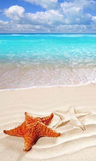 玩旅遊App|海灘壁紙免費|APP試玩