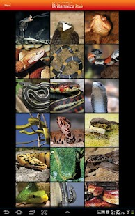 Britannica Kids: Snakes- screenshot thumbnail