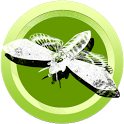 Butterfly & Insect Collector icon