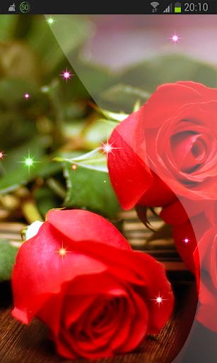Desert and Roses Wallpaper