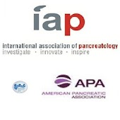 Int'l Pancreatic Guidelines