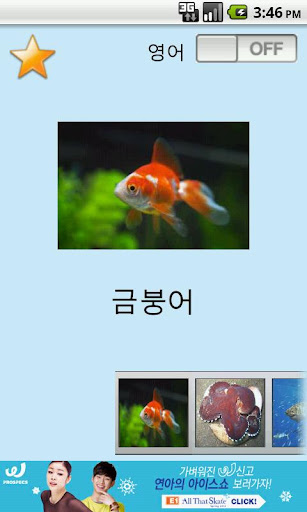 아기영어 물고기