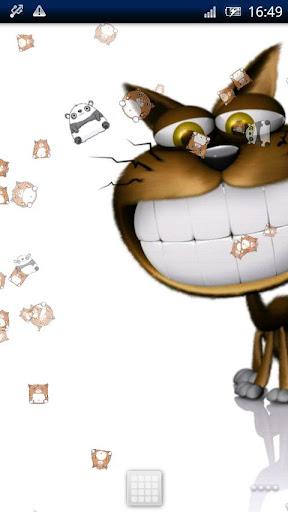 免費下載個人化APP|滑稽的貓動態壁紙 app開箱文|APP開箱王