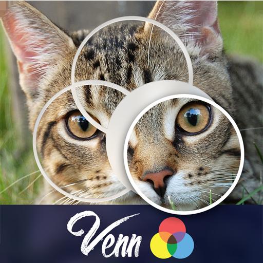 Venn Cats: Circle Jigsaw