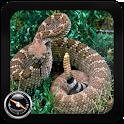 Poisonous Snakes: Venomous icon