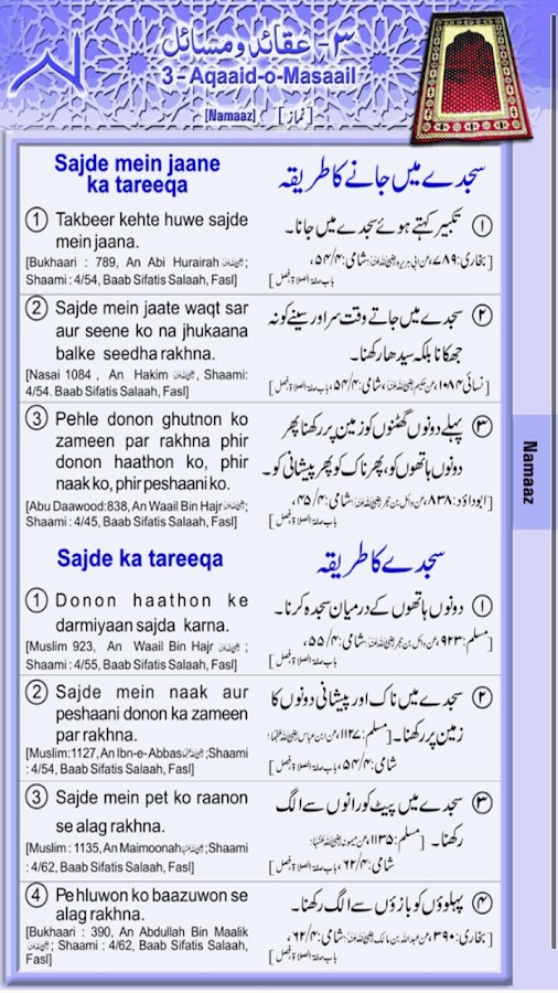 Deeniyat 1st Year Urdu-English - screenshot