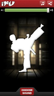 iFu - Virtual Kung Fu Game - screenshot thumbnail