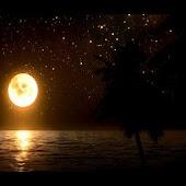 Moonlit Paradise LWP