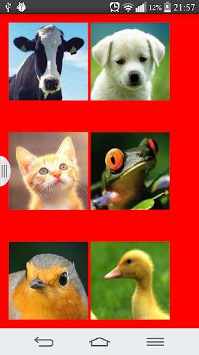 Hayvan Sesleri
