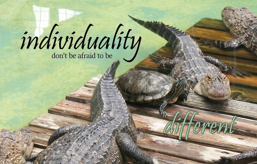 Individuality by Shannon Maltbie-Davis - Typography Captioned Photos ( different, water, wood, quote, alligator, typography, individuality, turtle, dock,  )