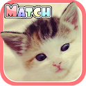 Cute Kitten Match - Memory app