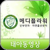 메디플라워 태아동영상
