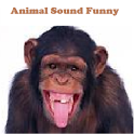 Animal Sounds Fun for kids icon