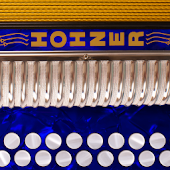 Hohner D/G Button Accordion