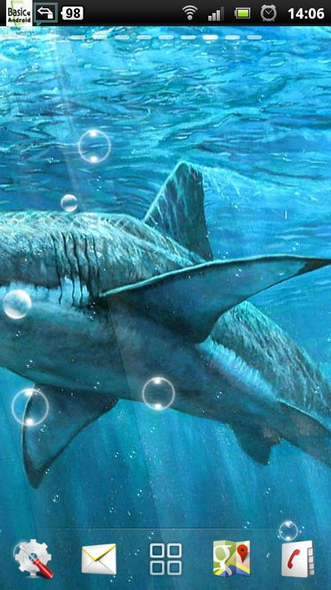 live shark wallpaper - photo #47