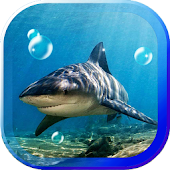 Shark Sea Reef live wallpaper
