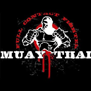 3d Muay Thai Live Wallpaper Free Android App Market