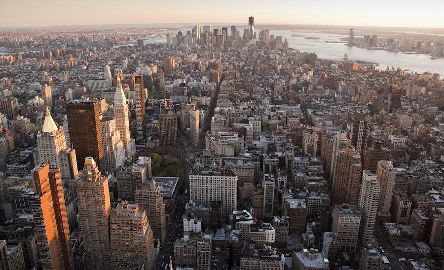 New York, NY, USA by Simon Harding - City,  Street & Park  Skylines ( observation, skyscraper, esb, manhattan, new york, nyc, deck, usa, empire state,  )