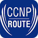 CCNP ROUTE Testing Simulation