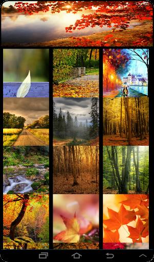 Live Autumn Wallpaper