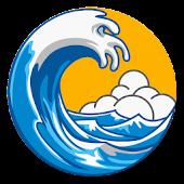 Surf Monitor