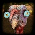 Turkey for Thanksgiving FULL icon