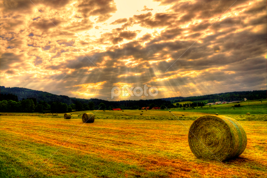 by Alexandre Soares - Landscapes Prairies, Meadows & Fields ( dramatic landscapes, humanity, fine art, landscape, people, sun, revive, love, sky, nature, emotions, july, long exposure, crowd, clouds, forests, earthly, desert, society, jade, green, mood, forest, scenic, relaxing, fire, dramatic landscape, sunset, hay, artistic, landscapes )
