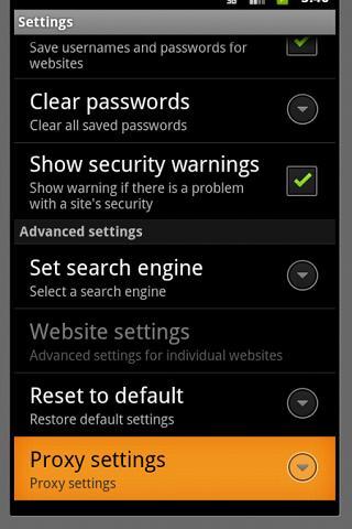 proxy browser - screenshot