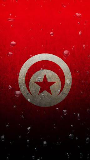 Tunisia flag water effect LWP