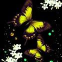 3D yellow butterfly logo