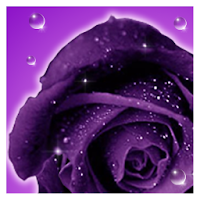 Roses live wallpaper 1.5.3.1