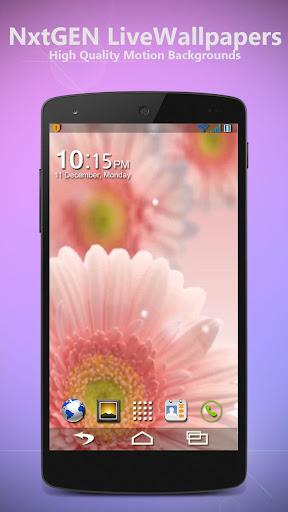 Pink Flowers - Live Wallpaper