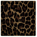 leopard Theme GO Launcher EX icon