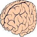 Brain Stimulator Pro logo
