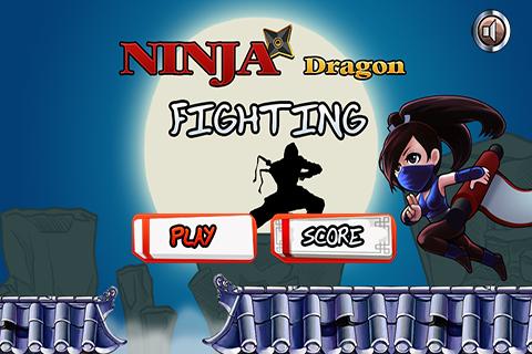Ninja Dragon Fighting