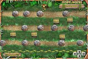 Screenshot of Monkey Money Slots