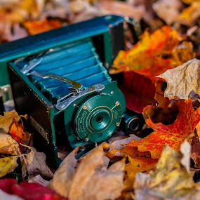 Green Camera by Olga Gerik - Artistic Objects Antiques ( vintage, camera, antique,  )
