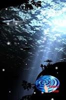 Screenshot of Shark Live Wallpaper free