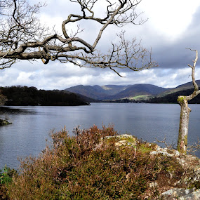 Lake Windermere by Ruth Holt - Novices Only Landscapes ( wray castle, windermere, lake, view, lake district,  )