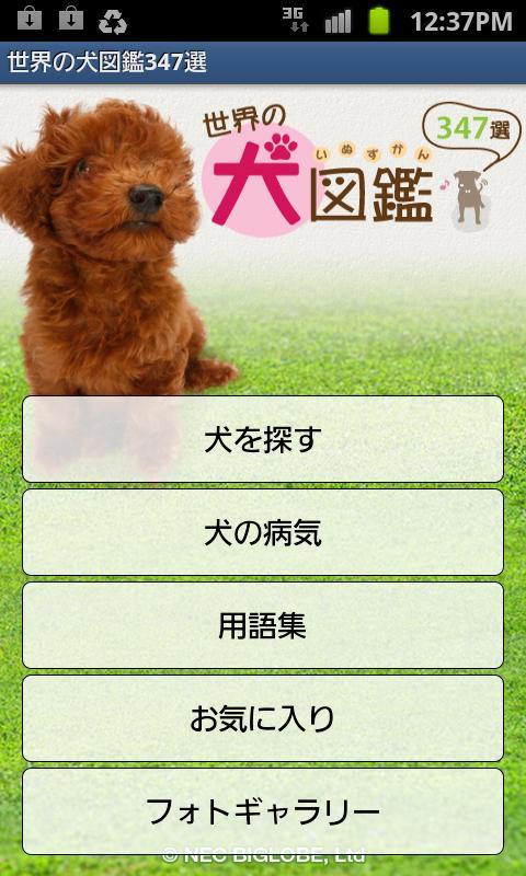 世界の犬図鑑347選- screenshot
