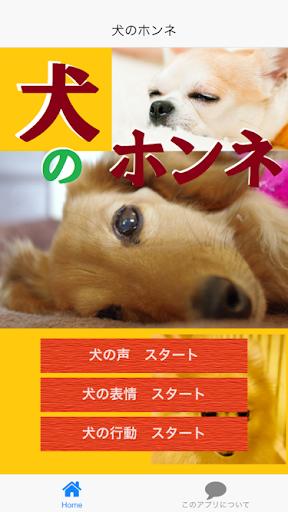 犬のホンネ