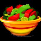 Japanese Diet icon