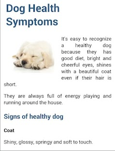 dog symptoms cure   android apps on google play